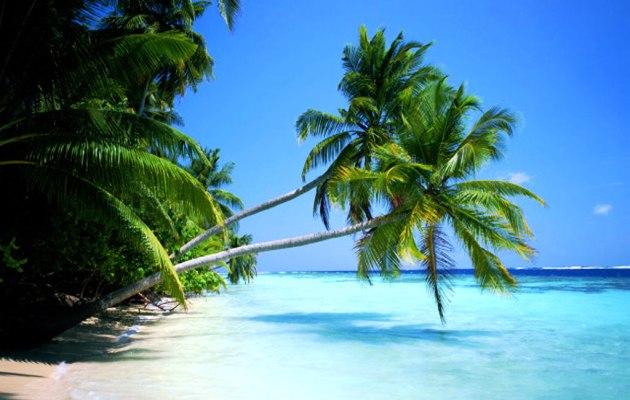 Caribe 2013