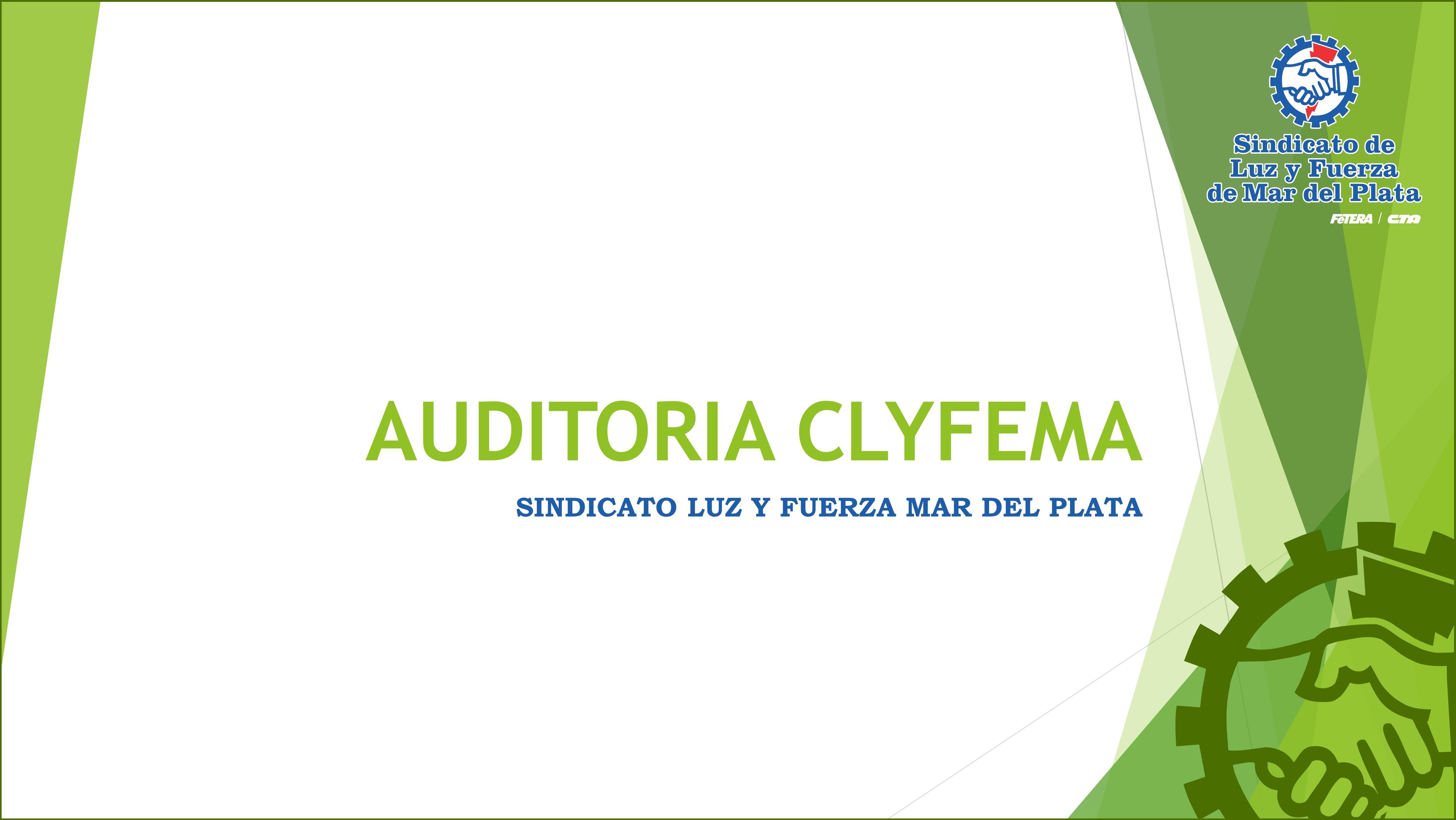 AUDITORIA EN CLyFEMA